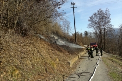 Incendio boschivo Barbaniga